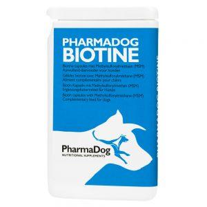 pes, psy, biotín, biotín s MSM, MSM, ľanový olej, regenerácia pokožky, koža, kožné problémy, nervový systém, energetický metabolizmus, biotín pre psov, biotín s MSM pre psov, MSM pre psov, ľanový olej pre psov, regenerácia pokožky psov, koža psov, kožné problémy psov, srsť, srsť psov, nervový systém psov, energetický metabolizmus psov, lněný olej, regenerace pokožky, kuže, kožní potíže, energetický metabolismus, lněný olej pro psy, regenerace pokožky psu, kuže psu, kožní potíže psu, energetický metabolismus psu, srst, srst psu, výživový doplnok pre psov, výživové doplnky pre psov, výživový doplněk pro psy, výživové doplnky pro psy