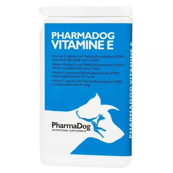 pes, psy, výživový doplnok pre psov, výživové doplnky pre psov, výživový doplněk pro psy, výživové doplnky pro psy, vitamín E, prírodný vitamín E, antioxidant, koža, srsť, kožné problémy, vitamín E pre psov, prírodný vitamín E pre psov, antioxidant pre psov, koža psov, srsť psov, kožné problémy psov, vitamin E, přírodní vitamin E, kuže, srst, kožní problémy, vitamin E pro psy, přírodní vitamin E pro psy, kuže psu, srst psu, kožní problémy psu