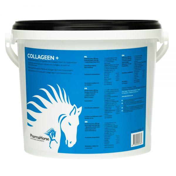 kôň, kone, kolagénové peptidy, nedenaturovaný kolagén typu II, kyselina hyalurónová, koža, kožné problémy, pohybový aparát, pohybová sústava, kolagénové peptidy pre kone, nedenaturovaný kolagén typu II pre kone, kyselina hyalurónová pre kone, koža koní, kožné problémy koní, pohybový aparát koní, pohybová sústava koní, kolagenové peptidy, nedenaturovaný kolagen typu II, kuže, kožní problémy, kolagenové peptidy pro kone, nedenaturovaný kolagen typu II pro kone, kuže koní, kožní problémy koní, výživový doplnok pre kone, výživové doplnky pre kone, výživový doplněk pro kone, výživové doplnky pro kone