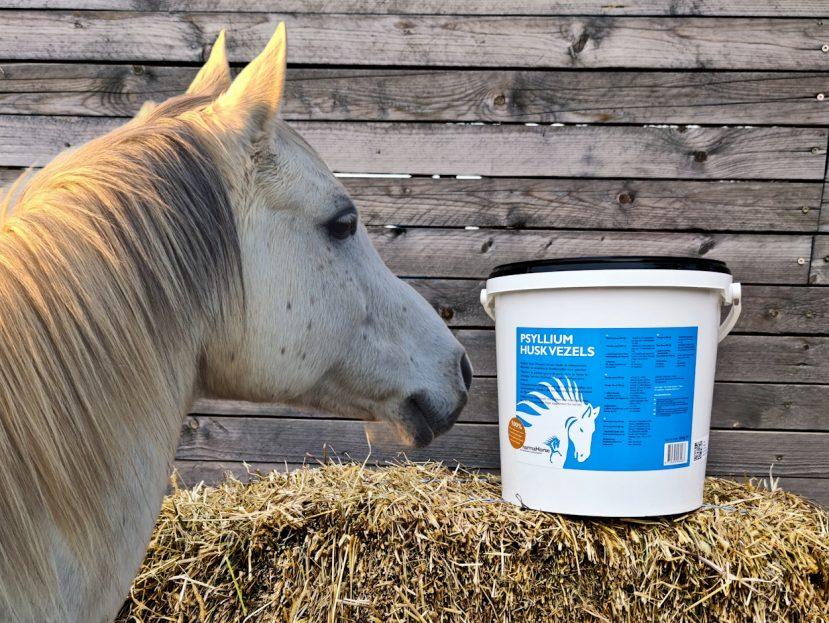 kôň, kone, výživový doplnok pre kone, výživové doplnky pre kone, výživový doplněk pro kone, výživové doplnky pro kone, vláknina, psyllium, ľan, trávenie, tráviace problémy, koža, srsť, kožné problémy, vláknina pre kone, psyllium pre kone, ľan pre kone, trávenie koní, tráviace problémy koní, koža koní, srsť koní, kožné problémy koní, vláknina pro kone, psyllium pro kone, len, len pro kone, trávení, trávení koní, problémy s trávením, problémy s trávením u koní, kuže, kuže koní, srst, srst koni, kožní problémy, kožní problémy u koní