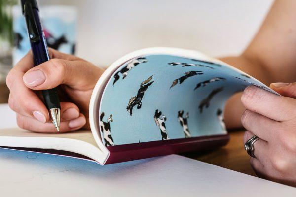 zápisník, zápisník, zápisník so vzorom koňa, zápisník so vzorom koní, zápisník s motívom koňa, zápisník s motívom koní, zápisník s ilustárciou koňa, zápisník s ilustráciou koní, zápisník so vzorom PONY, zápisník s motívom PONY, zápisník s pony motívom, zápisník s pony vzorom, emily cole