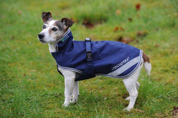Terapeutický kabát Freedom pre psov, bucas, nepremokavý kabát pre psov, nepremokavé oblečenie pre psov, kabát s ochranou brucha pre psov, oblečenie s ochranou brucha pre psov, terapeutický nepremokavý kabát pre psov, terapeutické nepremokavé oblečenie pre psov, terapeutický kabát s ochranou brucha pre psov, terapeutické oblečenie s ochranou brucha pre psov