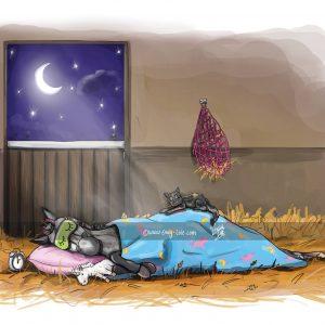 pohľadnica, pohľadnica so vzorom koňa, pohľadnica so vzorom koní, pohľadnica s motívom koňa, pohľadnica s motívom koní, pohľadnica s ilustárciou koňa, pohľadnica s ilustráciou koní, emily cole, pohľadnica Sweat dreams