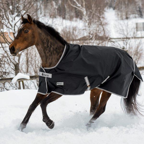 Anniversary Turnout, bucas, výbehová deka pre kone, vodeodolná výbehová deka pre kone, waterproof & breathable rug, výbehová deka pre kone do dažďa, priedušná výbehová deka pre kone, výbehová deka s hodvábnou podšívkou pre kone, silk-feel rug, magnetic Snap-lock, kvalitná výbehová deka pre kone, pohodlná výbehová deka pre kone, stay-dry