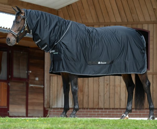Shamrock Power, bucas, odpocovacia deka pre kone, cestovná deka pre kone, stajňová deka pre kone, multifunkčná deka pre kone, deka s hodvábnou podšívkou pre kone