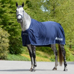 power prize Cooler, bucas, odpocovacia deka pre kone