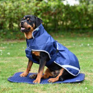 Terapeutická podložka pre psov, bucas