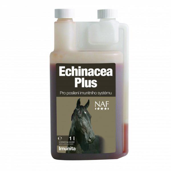 NAF, Echinacea plus, Echinacea plus pre kone, Echinacea plus pro kone, kôň, kone, imunita koní, imunita koní, výživové doplnky pre kone, výživový doplnok pre kone, výživový doplněk pro kone, rekonvalescencie koní, zotavenie koní, rekonvalescencia koňa, zotavenie koňa, imunita koní, imunita koňa, echinacea pre kone, echinacea pro kone, echinacena pre koňa