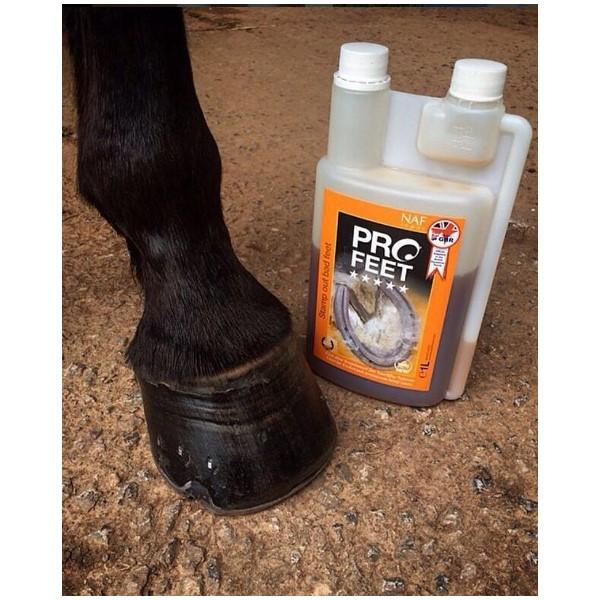 NAF, Pro Feet, kôň, kone, pohybová sústava koní, pohybová sústava koňa, kopytá koní, kopyto koňa, praskanie kopýt, lámanie kopýt, výživové doplnky pre kone, výživový doplnok pre kone, výživový doplněk pro kone