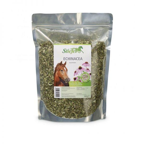Stiefel, echinacea, kôň, kone, imunita koní, imunita koňa, bylinky pre kone, byliny pro kone, echinacea pre kone, výživové doplnky pre kone, výživový doplnok pre kone, výživový doplněk pro kone