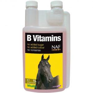NAF, B Vitamins, kôň, kone, stres koní, nervová sústava koní, upokojenie koní, stres koňa, upokojenie koňa, vitalita koní, apatia koní, b vitamín pre kone, výživové doplnky pre kone, výživový doplnok pre kone, výživový doplněk pro kone